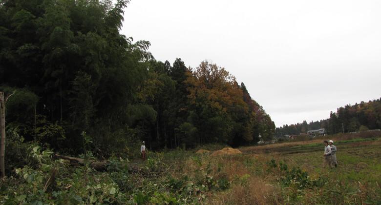 第2回「加茂の旅」 平成27年11月17日~18日